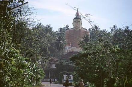 Dikwella - Tempel Wewurukannala Vihara - Wewurukannala Vihara Tempel