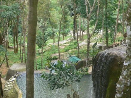 Paradise Parkfarm - Paradise Park Farm