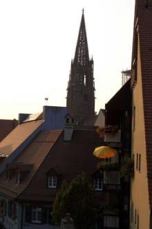 Dächer und Münster - Freiburger Münster