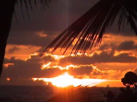 Sonnenaufgang Playa Bavaro - Playa Bávaro