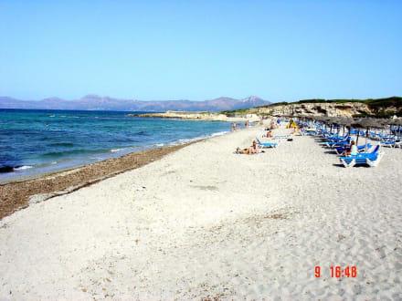 Bucht und Strand von Son Baulo (Can Picafort)  - Strand Son Bauló