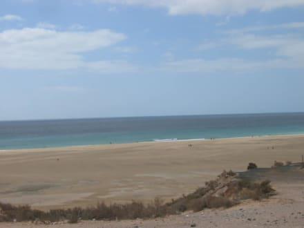 Playa de Sotavento - Playa de Sotavento