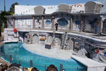 Robbenshow - Sea World