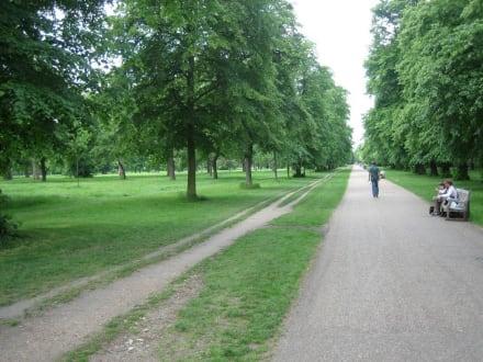 Hyde Park - Hyde Park