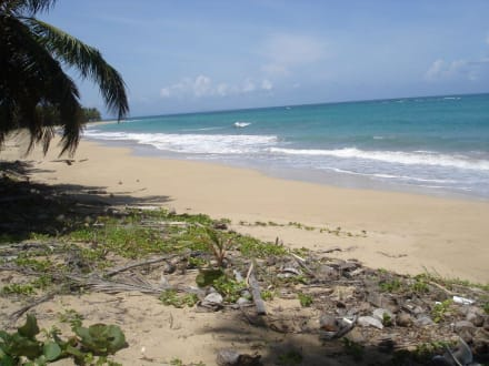 einsame Strände kilometerweit - Playa Esmeralda - Punta del Rey
