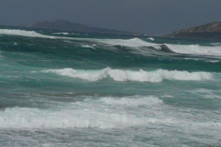 Surfen - Strand Rena Bianca