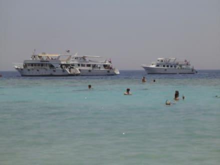 Fanara_Bucht - Rotes Meer