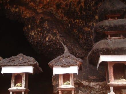 GOA LAWA Nahaufnahme - Goa Lawah / Fledermaustempel