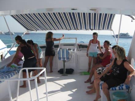 Ausflug - Giftun / Mahmya Inseln