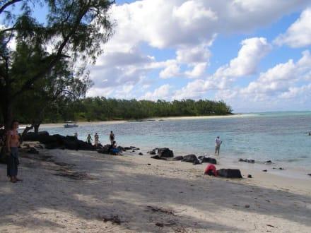 Strand der Insel - Île aux Cerfs