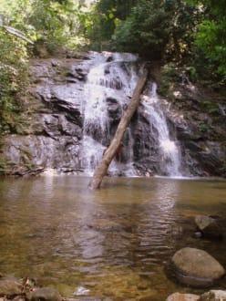 Chong Fa-Waterfall - Ton Chong Fah Wasserfall