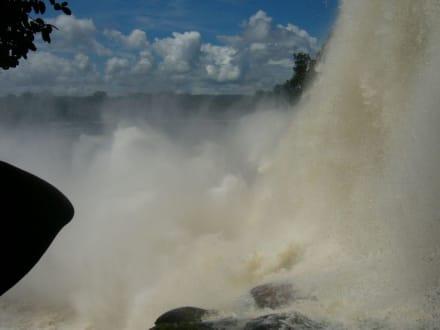 Wasserfall - Wasserfälle von Canaima - Salto Sapo