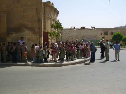 Schulkinder auf Endeckstour - Alabaster-Moschee / Mohammed Ali Moschee