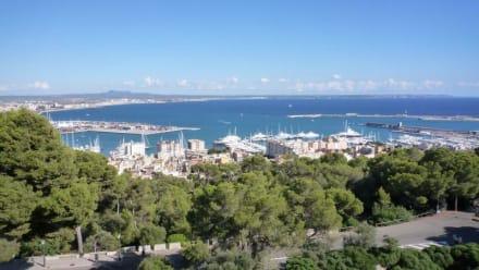 Toller Ausblick - Hafen Palma de Mallorca