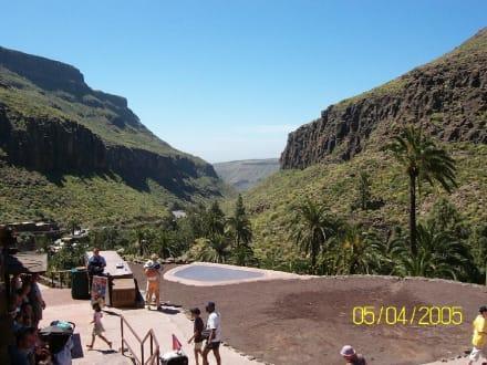 Palmitos Park, Maspalomas - Palmitos Park