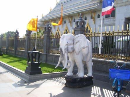 Weisser Elefant - Wat Sothon