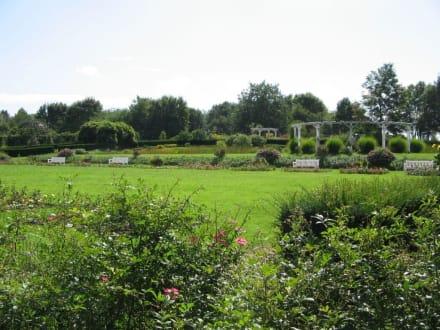 Park Rosenhöhe 9 - Rosenhöhe Park