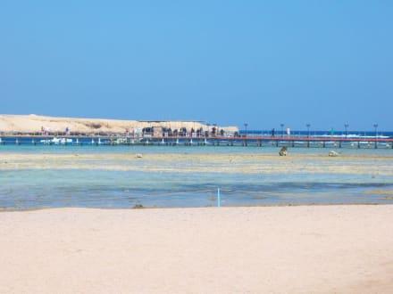 Coraya Bay - Schnorcheln Coraya Bay Marsa Alam