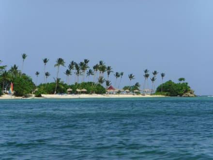 Blick vom Schnellboot zur Insel - Bacardi Insel - Isla Cayo Levantado