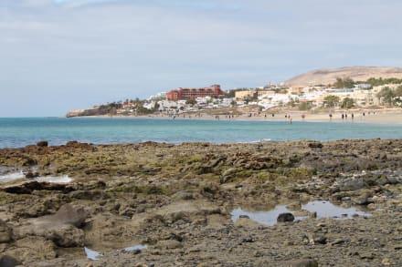 Blick auf den großen Strand - Strände Corralejo