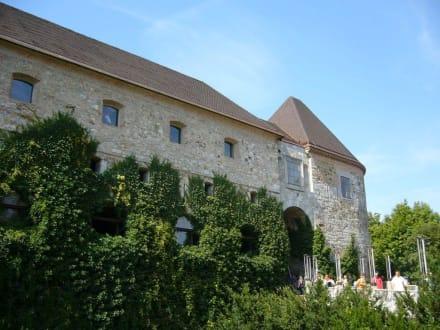 Aussenansicht der Burg - Burg von Ljubljana