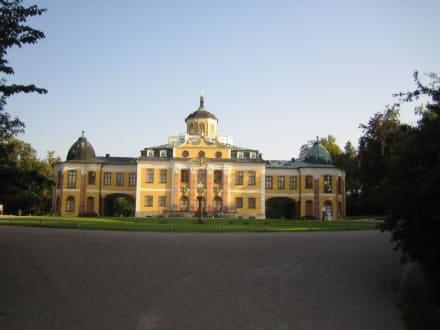 Das Schloss Belvedere von vorne. - Schloß Belvedere