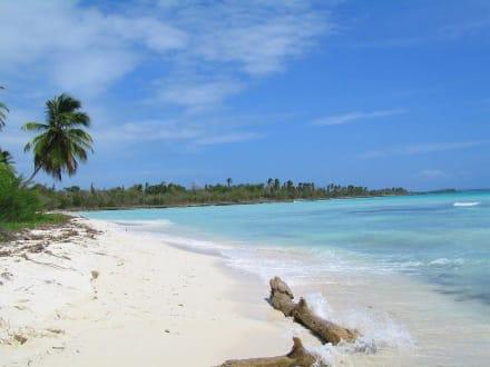 Isla Saona - Isla Saona