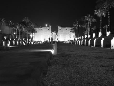 Luxor-Tempel bei Nacht - Luxor Tempel