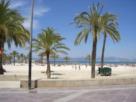 hotel reina mar: