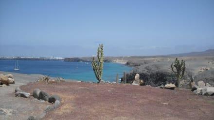 Wundervoller Strand - Playa de Papagayo