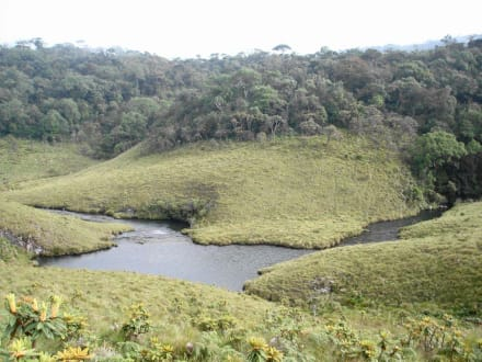 Mountain/Volcano/Hills - Horton Plains