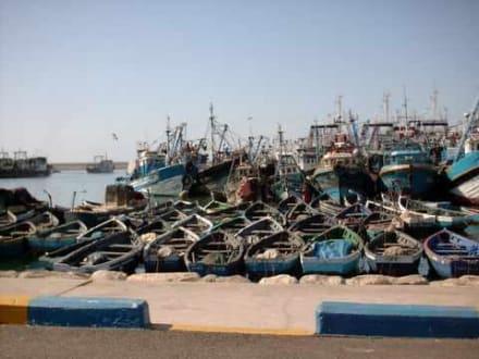 Zurückgekehrt - Fischereihafen Agadir