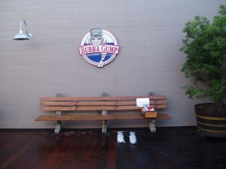 Forrest Gump - Pier 39