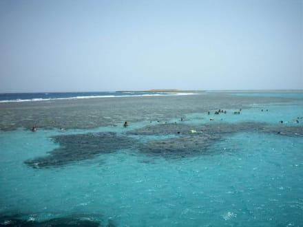 Schnorchel ausflug - Tauchen Makadi Bay