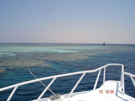 Ansicht des Jackson Reef - Jackson Reef