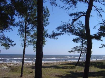 Blick aufs Meer - Strand Ahlbeck