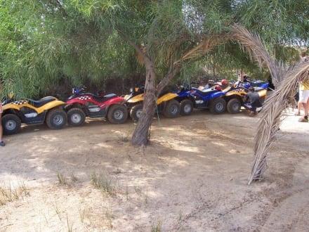 Quadtour - Quad Tour Mahdia