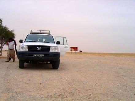 Halt in der Wüste - Tour & Ausflug