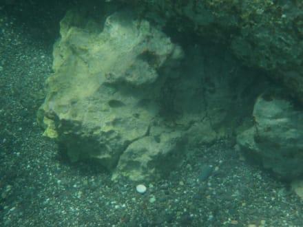 Sonst. Unterwassermotiv - Tauchen
