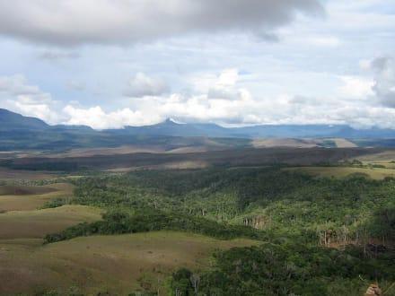 Gran Sabana - Gran Sabana