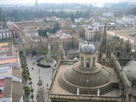 Blick von der Giraldar auf den Alkazar - Kathedrale von Sevilla