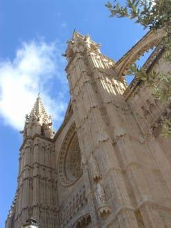 Katedrale La Seu - Kathedrale La Seu