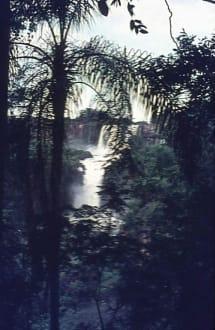 Imposante kleine Wasserfälle! - Wasserfälle von Iguazu
