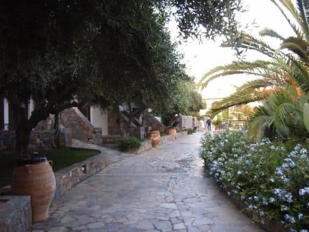 Jardin - Hotel Hersonissos/Chersonissos Maris