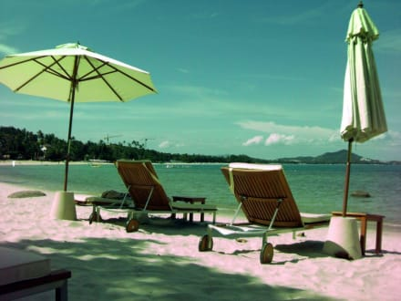Hotelstrand - The Sarann, Koh Samui