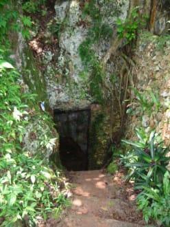 Höhleneingang - Nationalpark El Choco