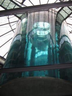 Gigantisch - der Aquadome! - Sea Life Center & Aquadome