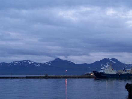 Tromsö am Eismeer - Hafen Tromso