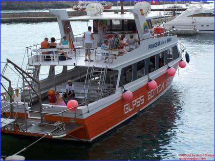 Glass Bottom Boot zur Küstenfahrt - Yachthafen Porto Cristo