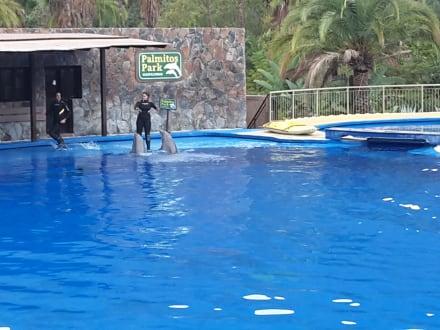Sonstiges - Palmitos Park